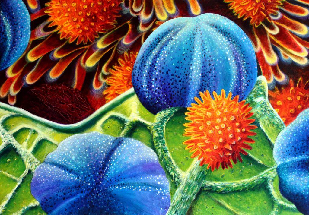 Pollination - 70 x 100 cm